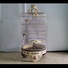 Sangkar Burung Ukir Untuk Pleci Bahan Akrilik Gambar Ruji Aluminium 1