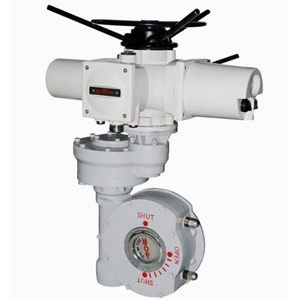 Combined Quarter-Turn Electric Actuator