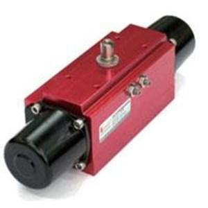 PDS Pneumatic Actuator