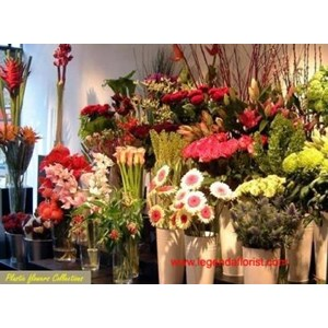 Jual 19 Bunga Plastik Harga Murah Kota Tangerang oleh JSM Florist df54449e08