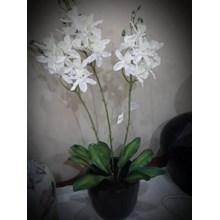 [Bunga Plastik Artificial] Bunga Anggrek Kala Puti