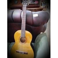 Gitar Garics F 370