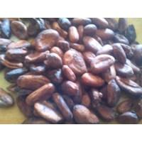Sell  Biji Kakao