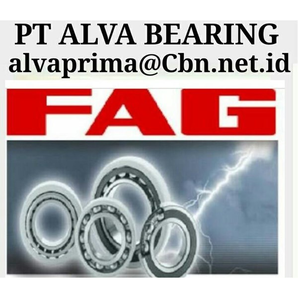 PT ALVA BEARING GLODOK BEARING FAG BALLL FAG ROLLER