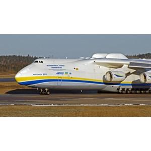 Export Import Service Wholesale  Import Service Undername  Door To Door Service Freight Forwarding Indonesia