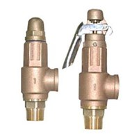 Jual safety valve