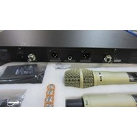 Distributor Mic Shure Ur4d Champagne Series 3