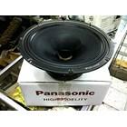 Panasonic 12 Inch Full Range 2