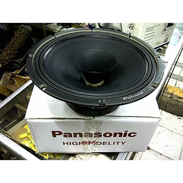 Panasonic 12 Inch Full Range