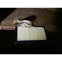 speaker tweter walet piro PR88  1