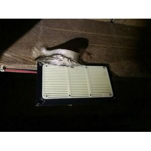 speaker tweter walet piro PR88