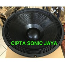 speaker 18 inch B&C TBX 100 subwoofer china