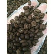 Kopi Luwak Robusta Roasted Bean