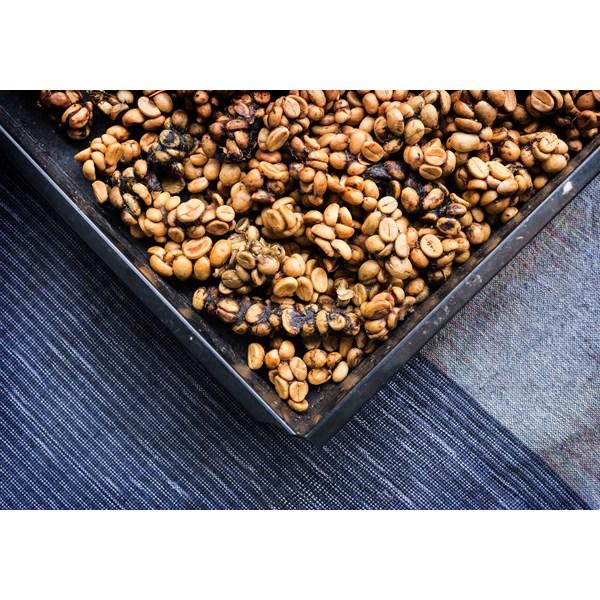Civet Coffee Robusta Roasted Bean