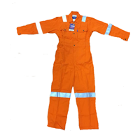 Wearpack / Coverall Tecasafe Plus Fire Resistance 1