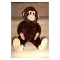 Monkey WS