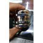 Cable Gland PG Brass Nickle 1