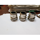 Cable Gland PG Brass Nickle 3