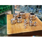 Cable Gland PG Brass Nickle 2