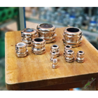 Cable Gland PG Brass Nikel Plated 4