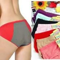 Jual celana dalam menstruasi