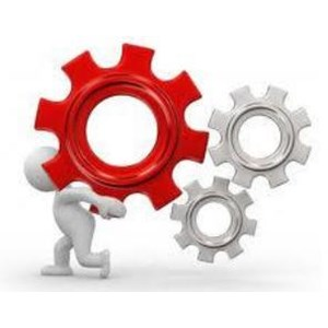 System Development Service By Excelsoft