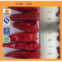 Bullet Chilli Cabai Bullet