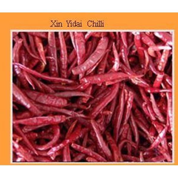 Xin Yidai Chilli