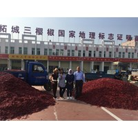 General Manager Xinyuan