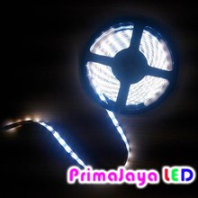 LED Strip 5050 IP 44 Cold White