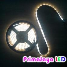 LED Strip Warm White 3528 non IP 44