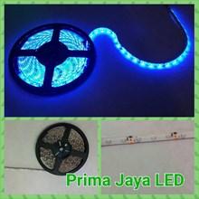Flexible LED Strip Blue 2538 IP44