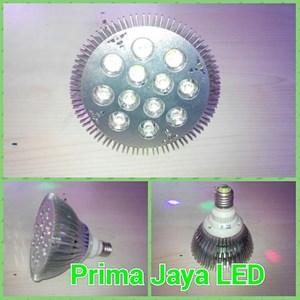 Bohlam Spotlight LED Par38 12 Watt
