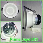 4 Watt LED Downlight lamps 1