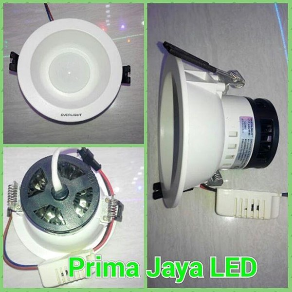 4 Watt LED Downlight lamps