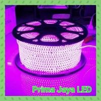 Lampu Selang LED Pink 2538 IP65 Outdoor
