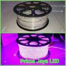 Flexible LED Color Pink 120 Lamp