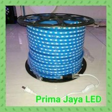 Selang LED 5050 Biru IP65 Outdoor