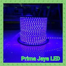 Selang LED SMD 5050 Biru Outdoor