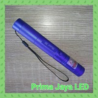Alat Presentasi New Green Laser Pointer 303 Body Biru