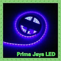 Lampu LED Strip Biru 5050 IP44 1