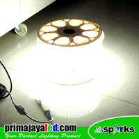Jual Lampu LED Selang 2 Baris 100 Meter 2