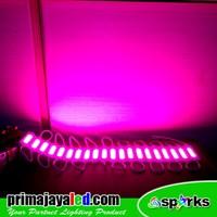 Outdoor LED Lamp COB Module 2 Watt Pink