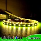 Lampu LED Strip Flexibel Warm White 5050 IP33 Indoor 1