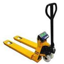 Pallet Weighing Scale Series