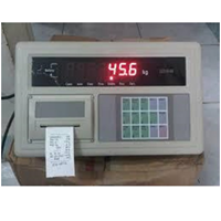 SCALE INDICATOR A9+P