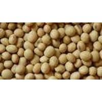 Jual Kacang Kedelai Import