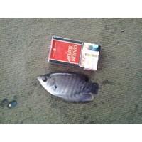 Jual Bibit Ikan Gurame