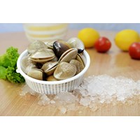 Frozen Half Shell White Clams Or Whole Shell White Clams