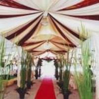 Jual Dekorasi Plafon Tenda Pesta